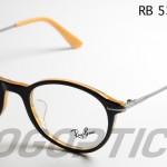 RB5307D-5019