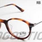 RB5307D-5195